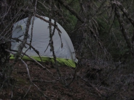 Camp in the wee hours of the morning.
